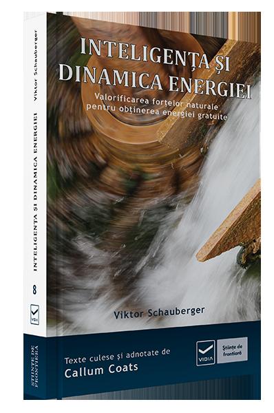 product_i_n_intel_dinam_energ_3d
